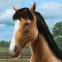 My Horse HD v1.23.1 mod tiền – Game nuôi ngựa cho Android
