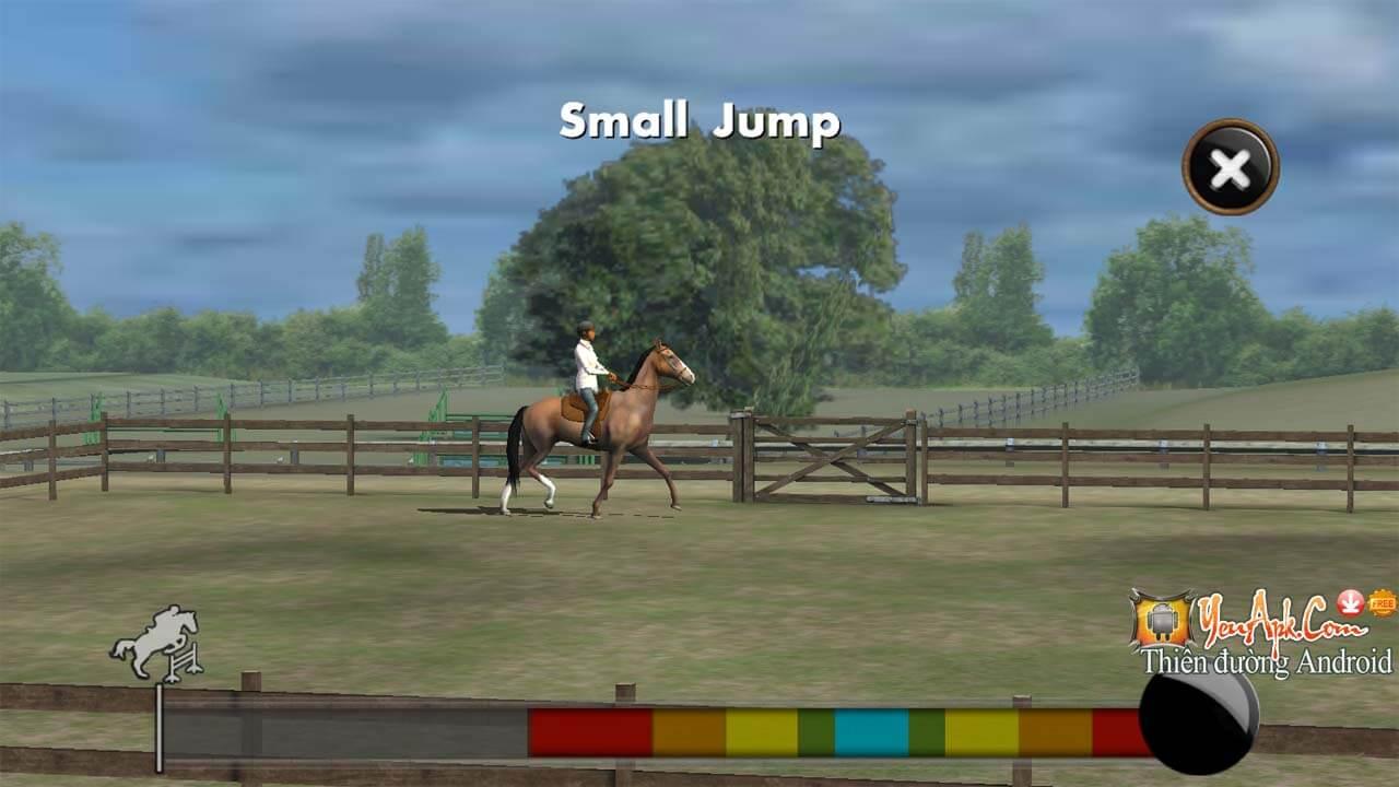 My_Horse_3