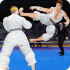 Royal Karate Training Kings mod – Game Kung Fu Fighting 2018 cho Android