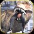 Dinosaur Simulator Dino World mod level (cấp độ) cho Android