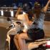 [Phần 58] Tổng hợp ảnh gái Việt đùi thon gọn, quần ngắn